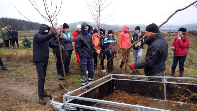 pan Ševčík vysvětluje ošetření kořenů stromu